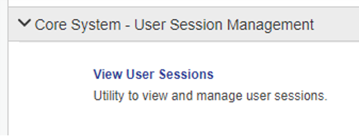 View User Sessions